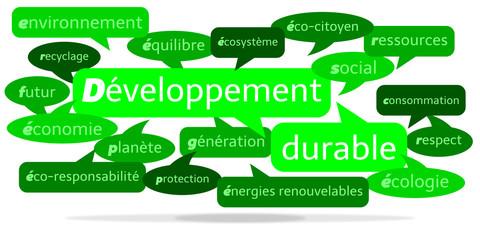 Nuage de Mots Développement Durable v3