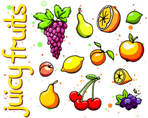 Collection of cartoon juicy fruits