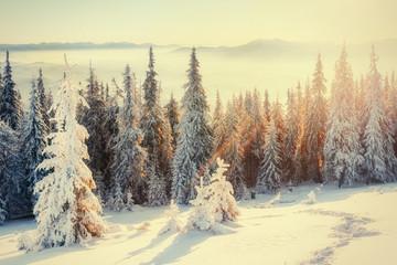 fog in winter mountains. Fantastic sunset