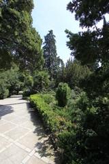 """Botanical Garden """"Nikitinsky"""""""