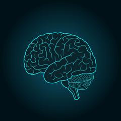 Schematic illustration of human brain on a dark blue background