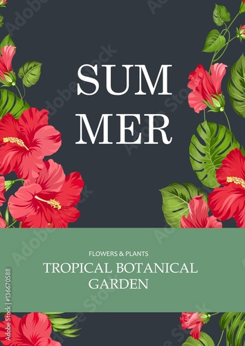 Book Cover Design Flower : Quot the book cover summer time and botanical garden text