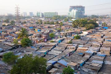 Slum Rooftops