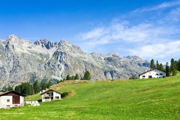 Fototapete - Schweizer Berge im Engadin im Kanton Graubünden