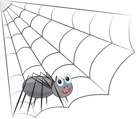 Funny spider on the web