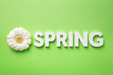 Flat lay spring letters with a flower on green background. Spring concept. Top view