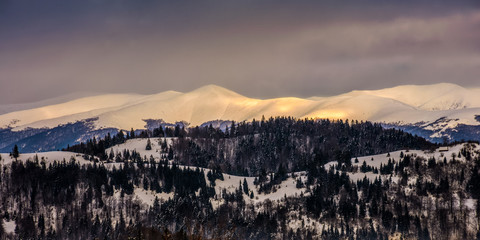 carpathians on golden winter sunrise