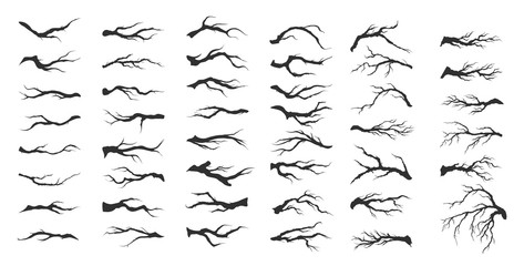 vector set dry tree branches