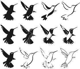 hummingbird stylization