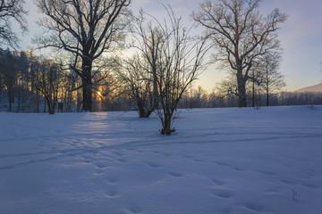 Winter Wonderland in morning light of the sunrise