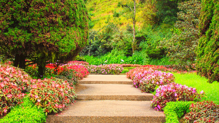 Stairs in a flower garden flower garden