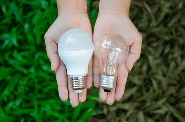 LED and Fluorescent bulb comparing on woman hand for alternative