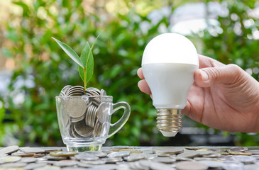 Woman hand is holding LED bulb with growing plant in the glass - Concept of saving energy