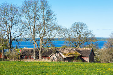 Wall Mural - Rural landscape with an old farm with thatched roof