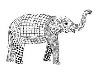Elephant doodle zentangle illustration on simple white background