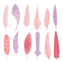 Digital Feathers Clipart in Vector on a white background.