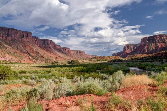 Dolores river valley in Mesa Canyon near Unaweep-Tabeguache scenic byway Gateway, Mesa County, Colorado, USA