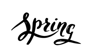 Vector handwritten brush script. Black letters isolated on white background. Spring