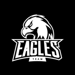 Furious eagle sport mono vector logo concept isolated on dark background. Web infographic professional team pictogram.