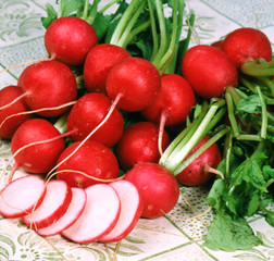 Red ripe radishes on a tablecloth