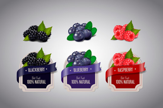 Realistic Berry labels set with blackberry, blueberry and raspbe