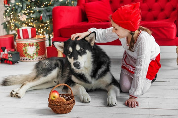 Girl child red riding hood costume with a big dog.