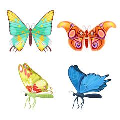Colorful Butterflies Set. Vector illustration