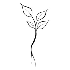 graphic design editable for your design, hand drawn leaf in black outline isolated on white background. vector illustration.