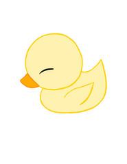 Fluffy Duckling