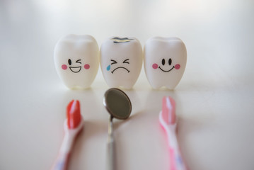 Model toys teeth in dentistry on a white background.