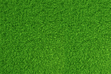 Deurstickers Groene Green grass. natural background texture. high resolution. 3d rendering