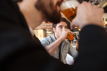 Cropped image of friends drinking beer