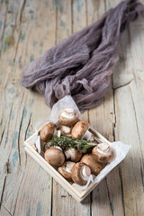 Fresh and natural mushrooms on plate