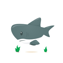 Shark vector isolated