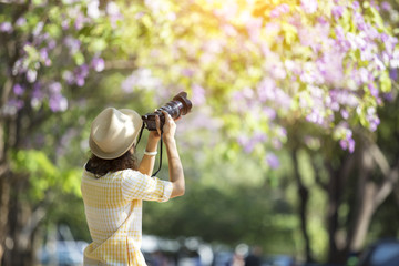 lady is taking photo of flower in outdoor park
