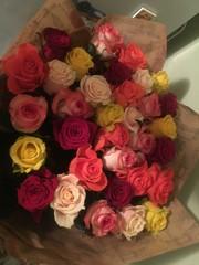 roses backround