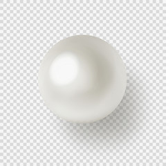 Vector illustration of shiny natural white sea pearl with light effects isolated on transparent background.