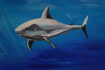 lieber Hai