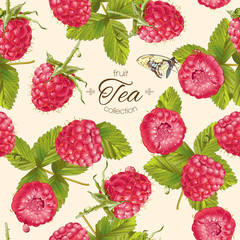 Vector raspberry tea pattern