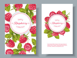 Raspberry vertical banners
