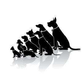 Group of sitting dogs in different breeds. Dog silhouette collection with copy space. Ranging in size from tiny Chihuahua to huge Great Dane. EPS 10 vector.