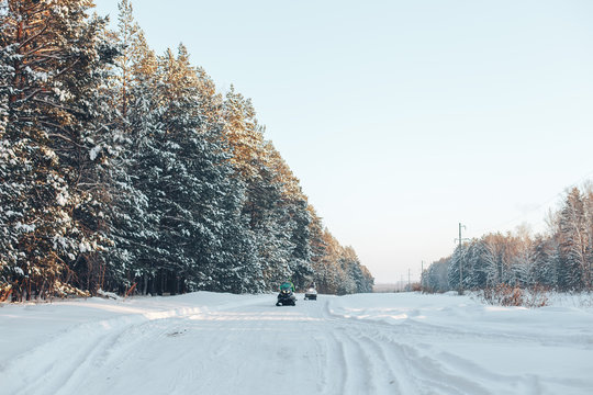 Winter road and forest