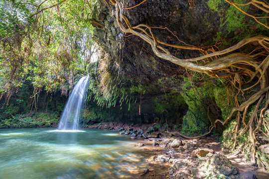 lush and green wilderness of twin falls, Maui, Hawaii. a great attraction on the road to hana where you can swim under the falls
