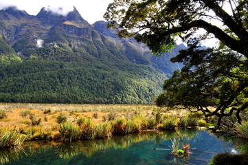 Mirror Lake close to Milford Sound, New Zealand