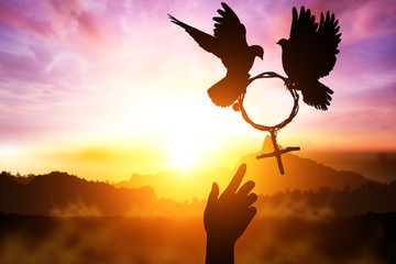 Foto En Lienzo - silhouette of Two helping hand desire to two dove holding branch in Venus symbol shape flying on sunset sky for International Women's Day background