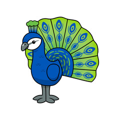Cartoon Peacock Vector Illustration