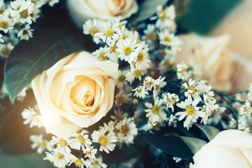 Beautiful Yellow rose. Vintage style Background