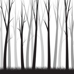 Simple Forest Background    - vector illustration