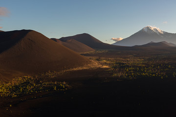 Volcanoes and Dead wood at dawn - consequence of catastrophic release of ash during the eruption of the volcano in 1975 Tolbachik north breakthrough