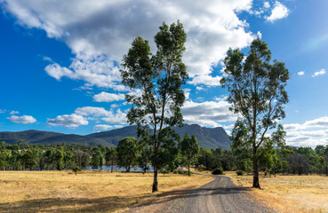 Australian Country Road. Idyllic scene at Grampians National Park Australia. Gravel road leading between eucalyptus trees. Dry prairie grass. Mountain in the distance.